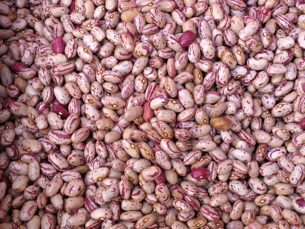 beans-557268_1280