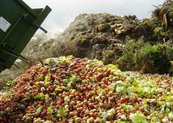 Matsmart – motverkar matsvinn